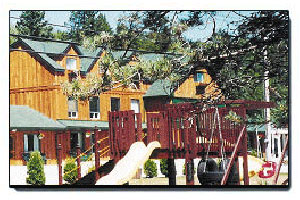 Dwight Village Motel Muskoka, Resort Partner Back Country Tours